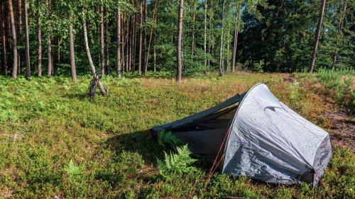 Polen erlaubt in 425 Waldgebieten das Wildcampen