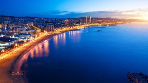 Nachtlicht an Küsten fördert Algenwachstum