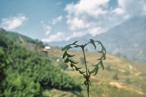 Die schönsten geführten Wanderungen | weltweite Mehrtagestouren