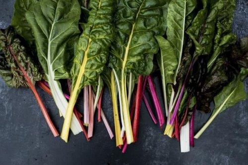Mangold – leckere Alternative zu Spinat