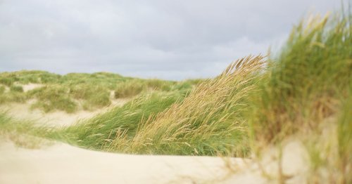 The beautiful beaches you can visit within an hour or two of Surrey