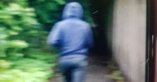 Police appeal after flasher pinches woman's bottom
