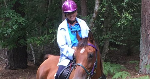 Rider 'could have been killed' after horse was attacked by a dog