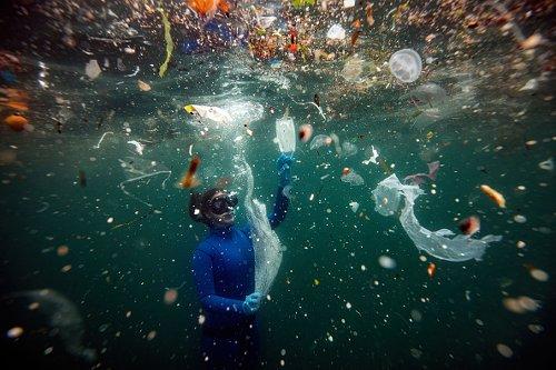 Diver retrieving plastics in Turkey