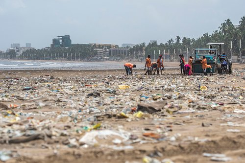Clean Up Efforts on a Beach in Mumbai