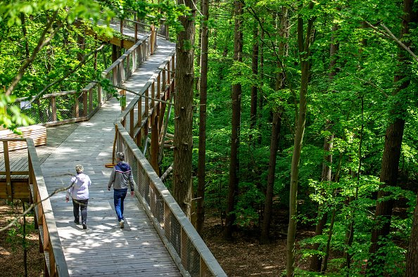 Usedom treetop path in Germany