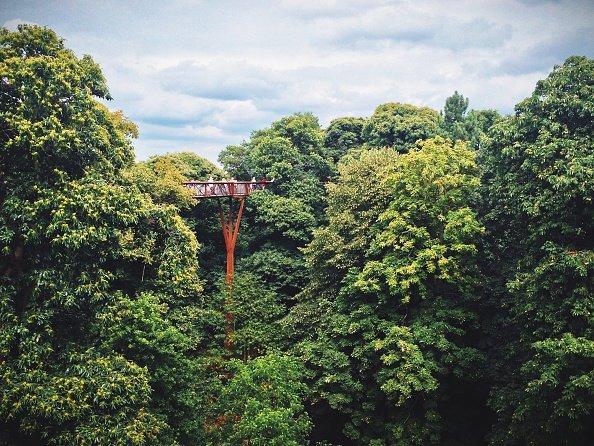 London's Royal Botanic Gardens