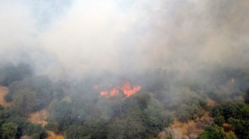 Fire Caused By Incendiary Balloons Launched From Gaza Strip