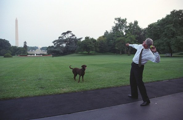 President Bill Clinton throwing tennis ball for Buddy