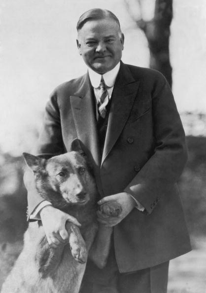 Herbert Hoover , the 31st President of the United States