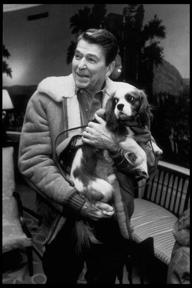 President Ronald Reagan holding Rex