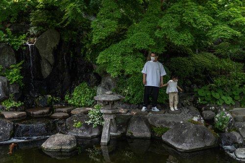 People Enjoy Japan's Golden Week Holiday in Kamakura