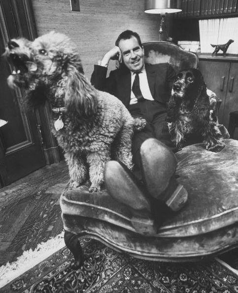 President Richard Nixon relaxing with Vickie & Checkers