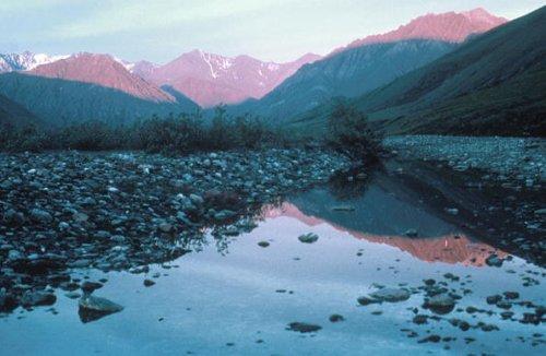 Kongakut Valley