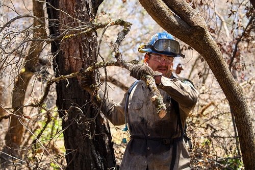 A California Conservation Corps firefighter