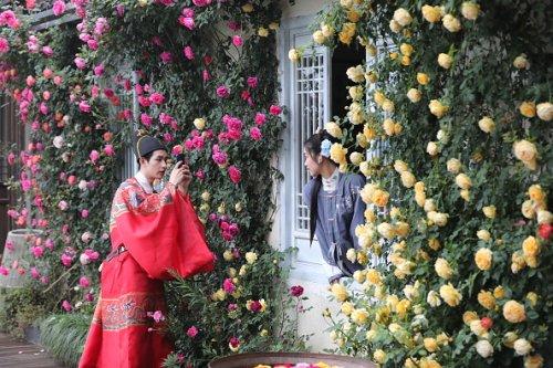 Rose Cultural Festival in China