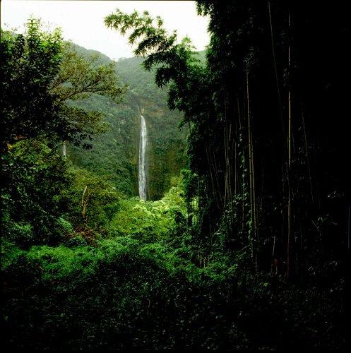 Waimoku Falls Haleakala National Park