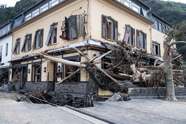Tree penetrates building