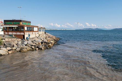 Sea Saliva on Marmara Sea in Istanbul
