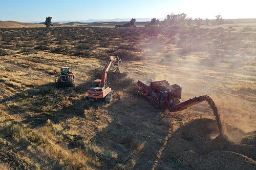 Almond orchard removal in Snelling