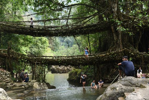 Tourists at the Double Decker Living Root Bridge in India