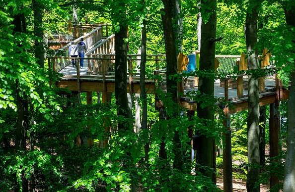 Another angle of Usedom treetop path