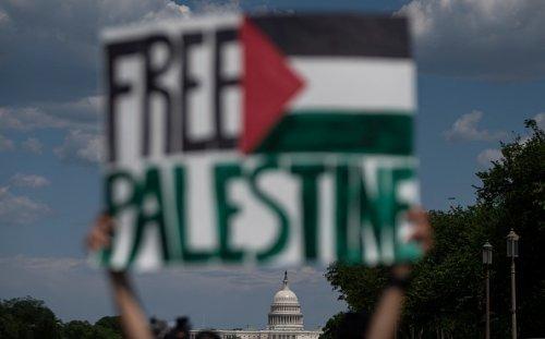 Attivista pro Palestina a Washington