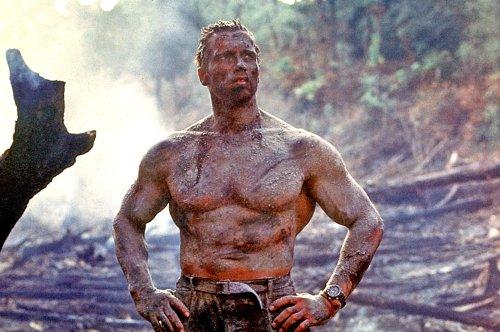 The Reboot Of Arnold Schwarzenegger's Predator Has Found Its Star