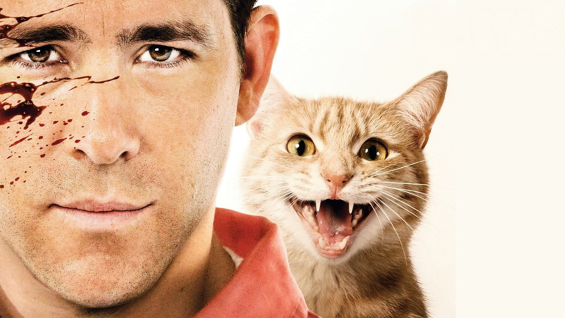 The Best Ryan Reynolds Movie And Why It's Unfairly Overlooked