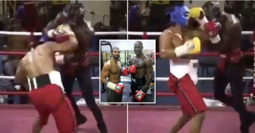 David Haye boxed Deontay Wilder's head well and truly off during sparring session in 2013