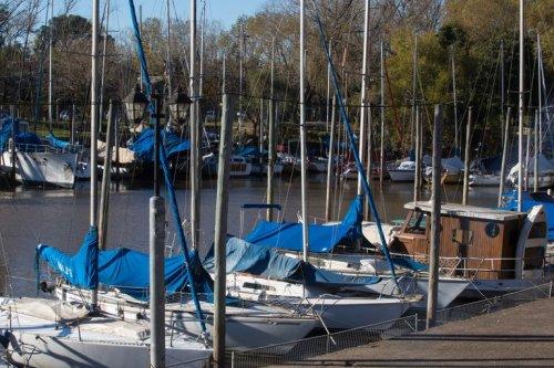 Veleros, lanchas y cruceros: la pandemia disparó la venta de embarcaciones