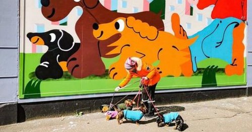 Local dog walker chosen as star of latest mural at Whiteinch cafe