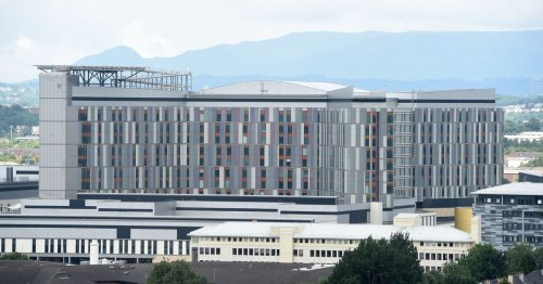 Construction of Queen Elizabeth Hospital to be investigated in inquiry