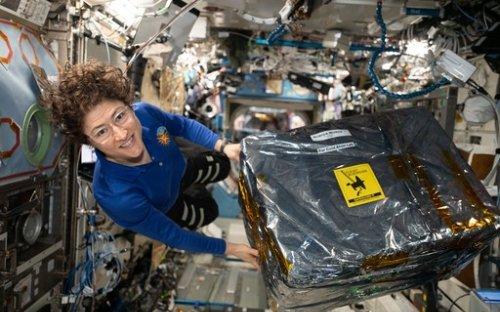 11 feitos da astronauta Christina Koch durante seus 328 dias no espaço