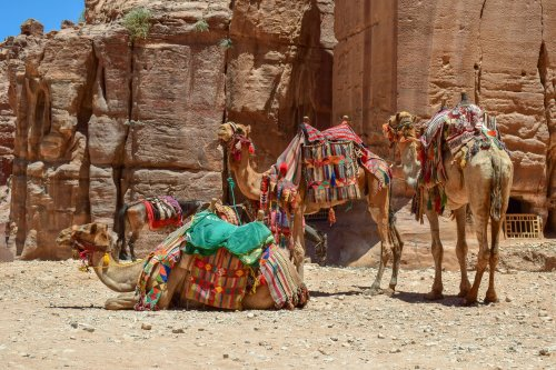 THINGS TO DO IN JORDAN :: Glimpses of the World
