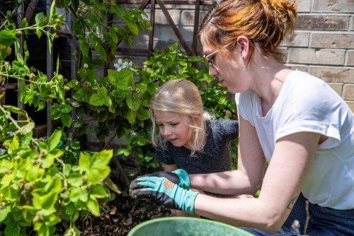 Home gardening blooms around the world during coronavirus lockdowns | GLOBAL HEROES MAGAZINE
