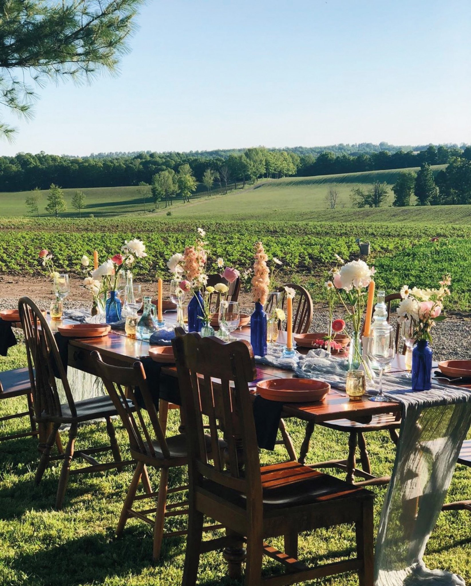 A Taste of Local: Experience Ontario's Farms