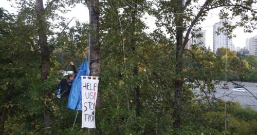 One arrested, charged at Burnaby 'tree-sit' against Trans Mountain pipeline   Globalnews.ca