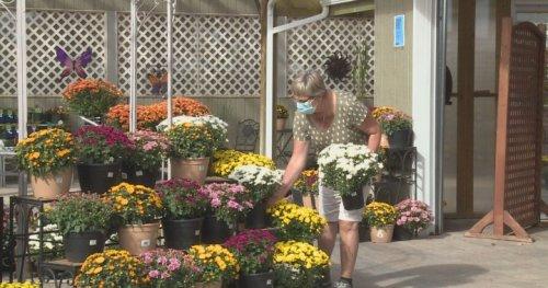 Tips on yard care, environmental sustainability as autumn rolls into Lethbridge - Lethbridge | Globalnews.ca