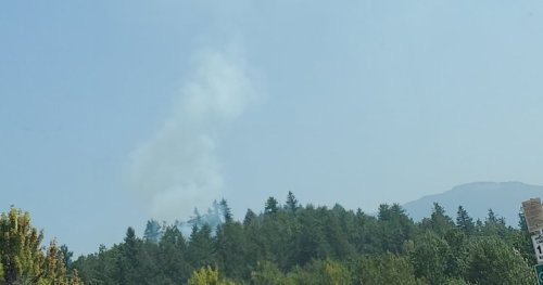 Fire breaks out in Heritage Park in Mission, B.C. - BC   Globalnews.ca