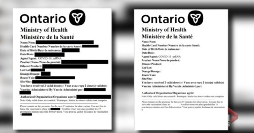 Are fake vaccine cards being used to enter Canada? | Globalnews.ca