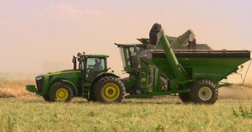 Harvest operations underway as drought conditions continue: Sask Ag   Globalnews.ca