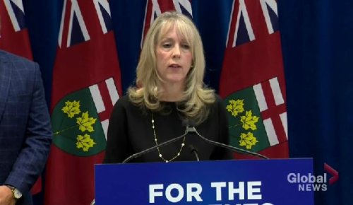 Rod Phillips to replace Merrilee Fullerton as Ontario's LTC minister as part of large cabinet shuffle