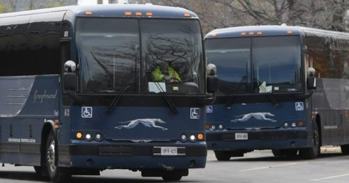 Greyhound Canada closure will be a 'disaster' for rural communities, experts say
