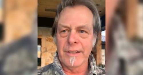Coronavirus denier Ted Nugent tests positive for COVID-19