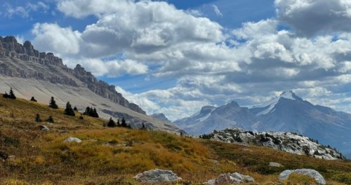 'Normal' autumn expected after one of the hottest summers ever in Alberta | Globalnews.ca