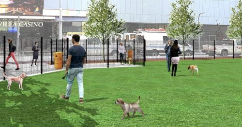 Edmonton Ice District will be home to new temporary off-leash dog park