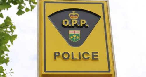 Man arrested with loaded firearm following fight in Wasaga Beach, Ont. - Barrie | Globalnews.ca