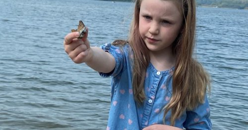 Little girl finds unique fossil at Alberta lake | Globalnews.ca