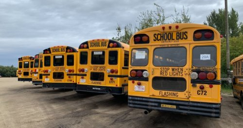 Insurance rates could impact school bus service in Alberta: contractor association | Globalnews.ca